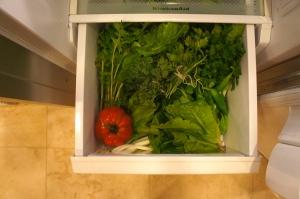 taste_CSA_fridge
